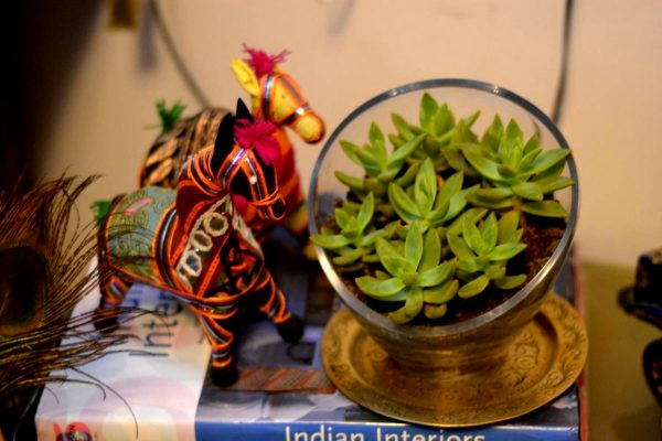 The glass bowl converted to a planter, filled with succulents. It sits pretty next to rag dolls from Gujarath.