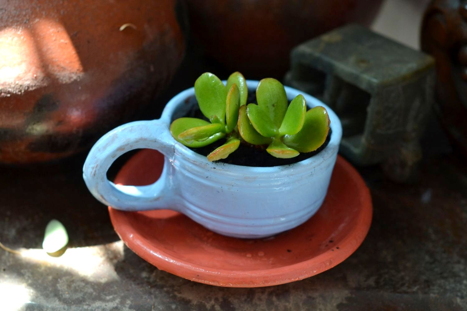 Day 3 – DIY Painted Terracotta